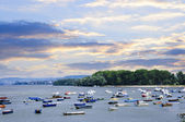 River boats on Danube — Stock Photo