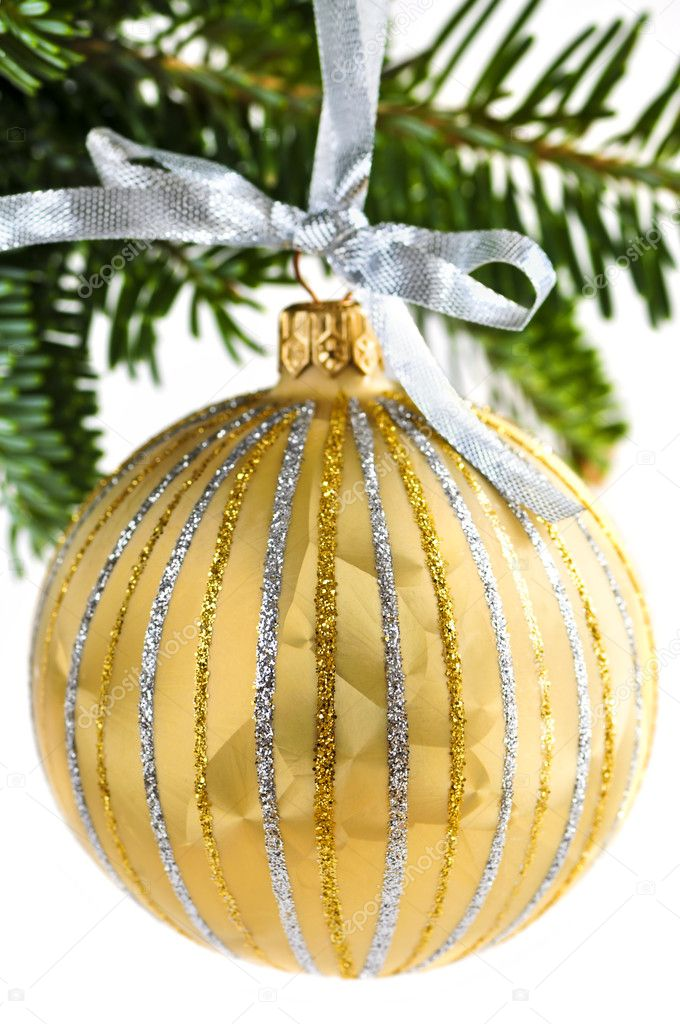 Golden Christmas decoration hanging on pine branch isolated on white  Stock Photo #4518298