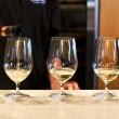 Wine tasting glasses - Stock Photo