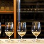 Wine tasting glasses — Stock Photo