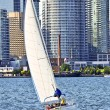 Sailboat in Toronto harbor - Stock Photo