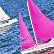 Small sailboats - Stock Photo