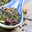 Loose green tea — Stock Photo