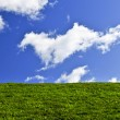 Stock Photo: Blue sky and green field