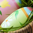Easter eggs with green grass — Stock Photo #4565715