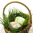 Easter eggs with green grass — Stock Photo #4565716