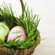 Easter eggs with green grass — Stock Photo #4565717