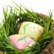 Easter eggs with green grass — Stock Photo #4565724
