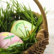 Easter eggs with green grass - Stock Photo