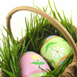 Easter eggs with green grass — Stock Photo #4565729