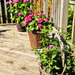 Flower pots on house deck — Stock Photo