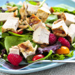 Green salad with grilled chicken - Stok fotoğraf