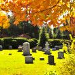 Stock Photo: Graveyard with tombstones