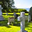 Graveyard with tombstones — Stock Photo