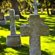 Royalty-Free Stock Photo: Graveyard with tombstones