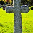 Graveyard with tombstones - Stock Photo