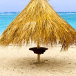 Tropical beach umbrella - Foto de Stock  