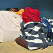 Stock Photo: Beach bags