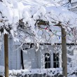Front yard of a house in winter — Stock Photo