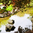 Pond in zen garden — Stock Photo