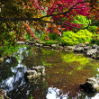 Pond in zen garden — Foto de Stock