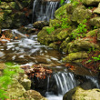 Creek with waterfalls — Stok fotoğraf