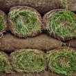Royalty-Free Stock Photo: Rolled sod