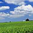 Rural landscape - Foto Stock