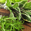 Bunches of fresh herbs — Stock Photo #4569604