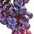 Red grapes — Stock Photo #4569684