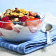 Yogurt with berries and granola — Stock Photo #4569694