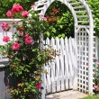 White arbor in a garden — Stock Photo