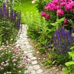 sökväg i blommande trädgård — Stockfoto #4569726