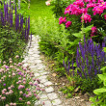 Pfad im Blumengarten — Stockfoto #4569726