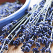 Dried lavender — Stock Photo #4569781