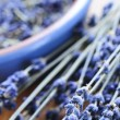 Dried lavender — Stock Photo #4569784