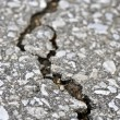 Crack in asphalt - Stock Photo