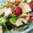 Green salad with grilled chicken — Stock Photo