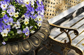 Planter with pansies and bench — Stock Photo