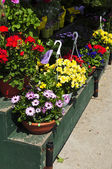 Flower baskets for sale — Stock Photo