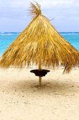 Tropisch strand paraplu — Stockfoto