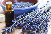 Lavender herb and essential oil — Stock Photo
