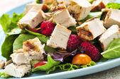 Zelený salát s grilovaným kuřecím masem — Stock fotografie
