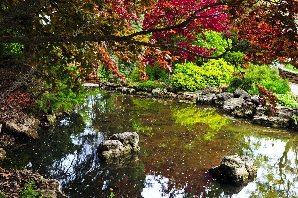 Zen garden pond stok foto elenathewise 4566599 for Zen garden pond