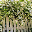 White fence in a garden - Photo