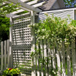 White trellis in a garden - Stock Photo
