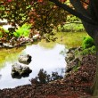 Stock Photo: Pond in zen garden