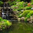 Cascading waterfall and pond — Stock Photo #4635372