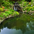 Cascading waterfall and pond - Stock Photo