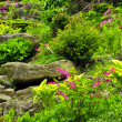 Stock Photo: Rock garden